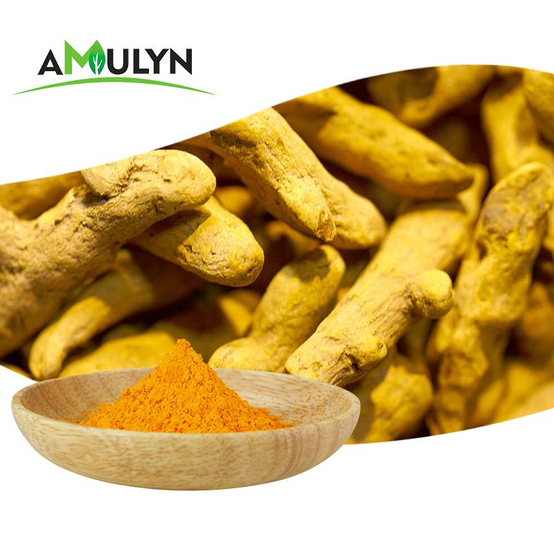 Натуральный Пищевой пигмент, куркума, 95% экстракт корня, порошок