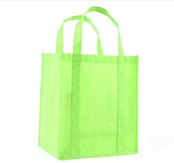Cheap Green Wholesale Recycled Durable Long Handle Non Woven Dust Bag