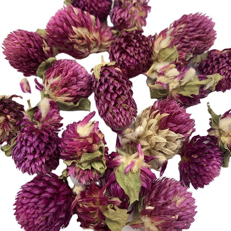 0190 Free Sample Tea Dried Flower Buds Globe Amaranth Qian Ri Hong - 4uTea | 4uTea.com