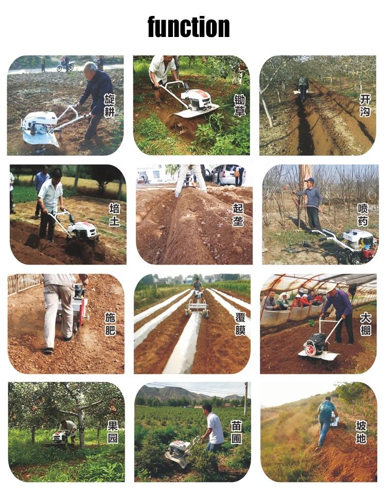 Agriculture Farm Paddy Field Orchard Tiller Cultivator Machine 6HP Mini Power Tiller Mini Tiller Garden Tilling Cultivating