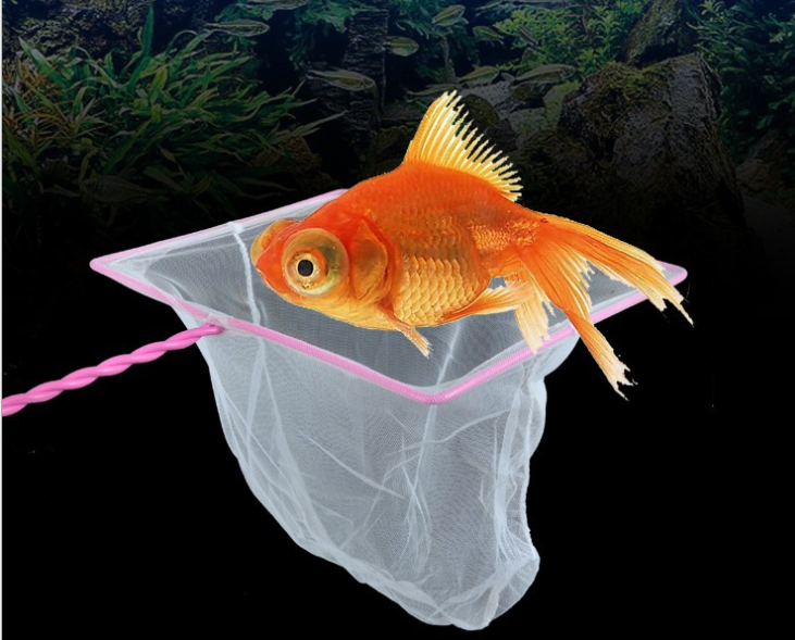 Оптовая продажа модные популярные ручки снасти другие рыболовные продукты Diddle-net рыболовная сачок