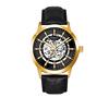 Gold case, gray dial, black dial