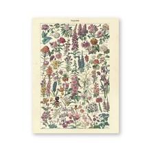 Винтажный цветочный принт, старинные цветочные плакаты и печать, Картина Настенная, растительный дом, настенная живопись на холсте, домашни...(Китай)