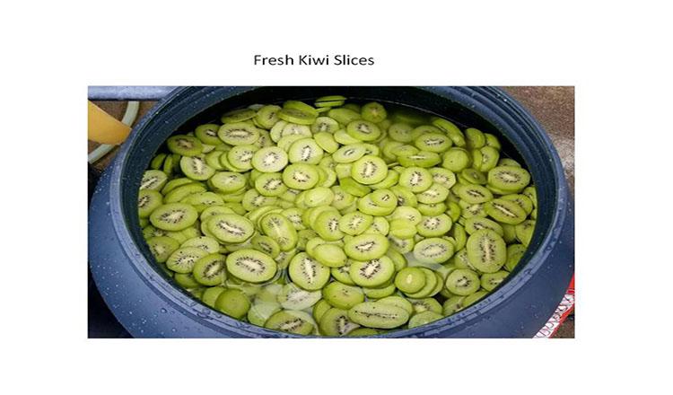 Хит продаж, китайский Xian, 100% натуральный фруктовый сухой нарезной киви зеленого цвета
