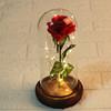 Red Rose, Dark brown
