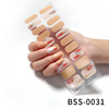BSS-0031
