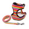 dog harness leash