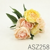 ASZ258