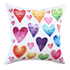Scatter Cushiion 009