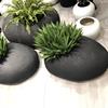 Black Sandstone