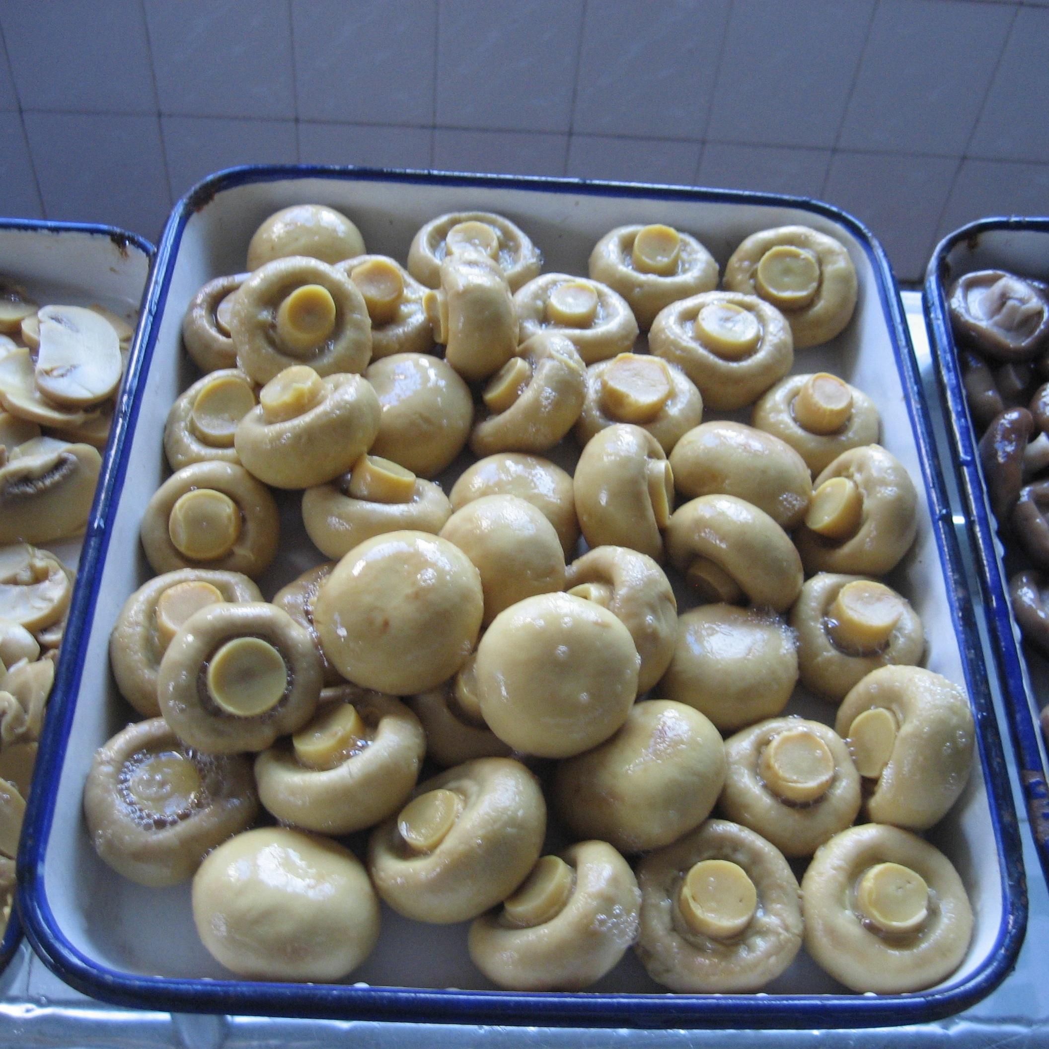 Халяльные продукты питания, консервированные грибы PNS в стеклянной банке или баночке