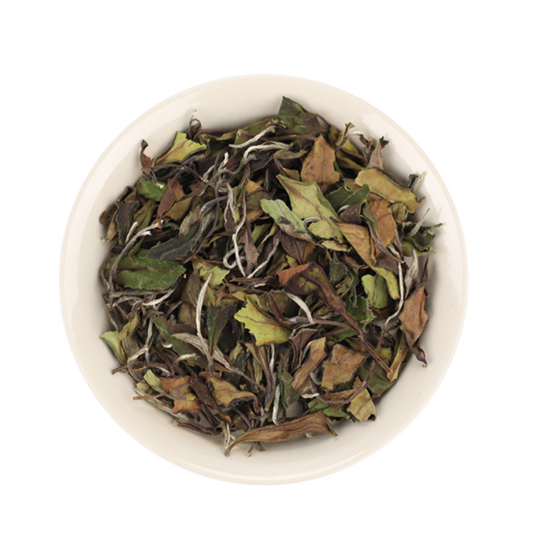 Factory supply Chinese Fujian Fuding Aged White Tea Shou Mei for Wholesale - 4uTea | 4uTea.com