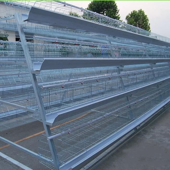Best quality cold galvanizing bird chicken breeding cage/hen cage