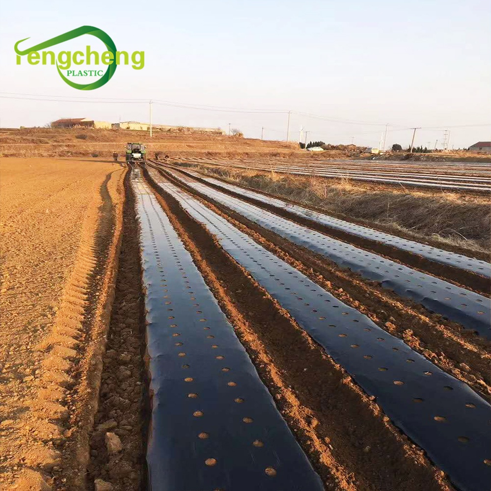 factory price perforated plastic ldpe mulch film / mulching paper agricultural for seeding