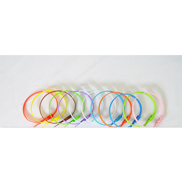 Регулируемая самоблокирующаяся нейлоновая 66 кабельная стяжка, пластиковая многоразовая кабельная стяжка для крытой игровой площадки,