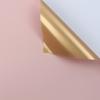 166 Light Pink+Gold