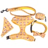 dog leash set