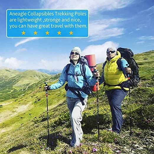 Younghuntes Кемпинг пеший Туризм Восхождение 5 в сложенном виде альпеншток углерода 7075 Алюминиевый 3-в-1 безопасный дом для вашего ребенка, Сверхлегкий прогулки лыжные палки