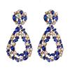 Color 4 rhinestone drop earrings