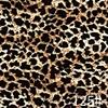 Leopard 1 #
