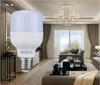 light bulb & lamp holder