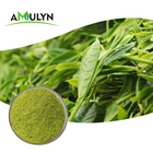 Natural Green Tea Premium Natural Matcha Green Tea Powder