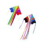 2020 OEM Promotional Cheap custom diamond factory made colorful long tail delta kite