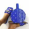 blue-LLban001 set