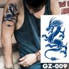 GZ009