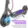 350w Powerful Motor