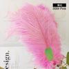 008# Pink