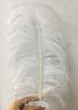 45-50cm thick rod