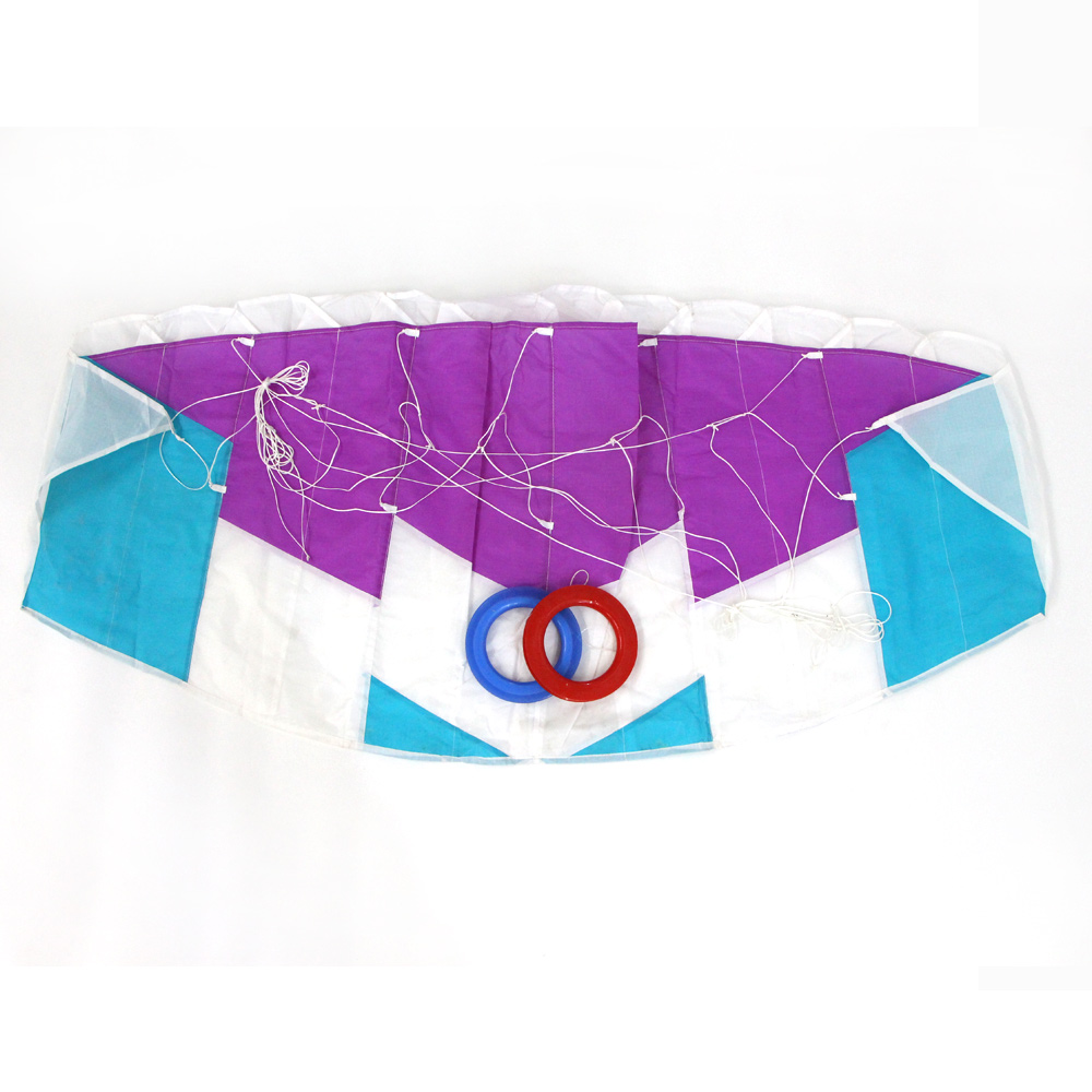 Hot Sale Giant Double Line Children and Adult Outdoor Games Sport custom made Power kite