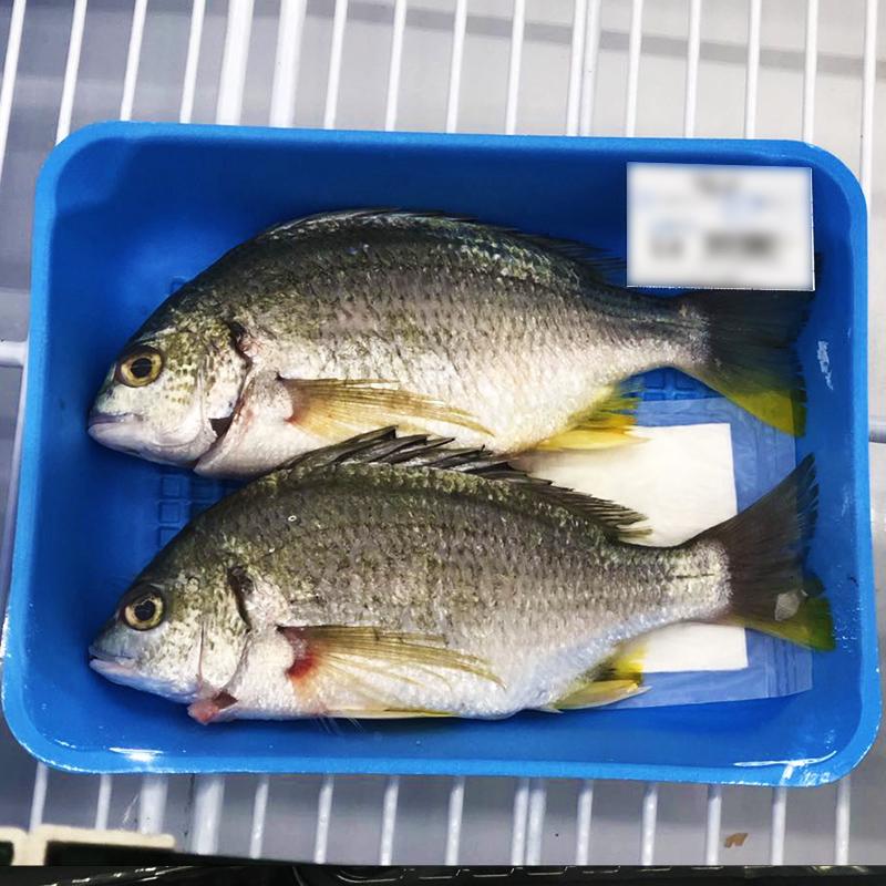 Одноразовая пищевая упаковка, влагопоглощающая подставка для рыбы, домашней птицы, Высококачественная Абсорбирующая подставка для мяса, Упаковочная подставка