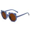 12012 C16 Blue/Brown
