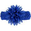 17#Royal Blue