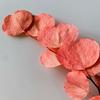 गुलाबी