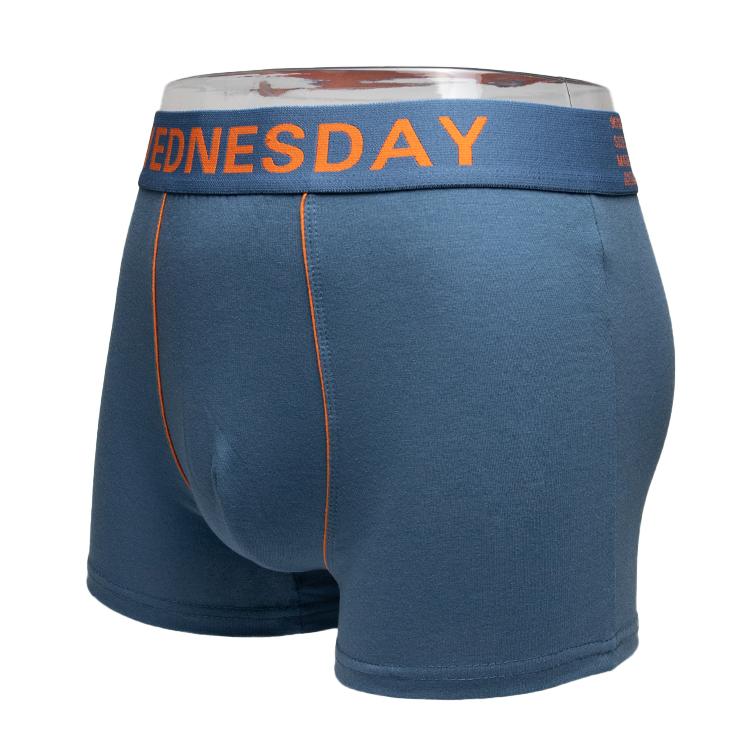 Wholesale Mens Solid Red Thick Teen Male Basic Plus Size Men Underpants Briefs Boxer Hombre Brief Underwear