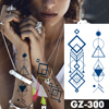 GZ300