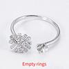 Platinum Empty rings