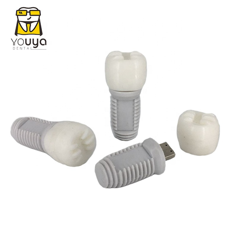 Best Selling PVC Material Tooth Shape 16GB USB Flash Drive For Dentist Gift - USBSKY | USBSKY.NET
