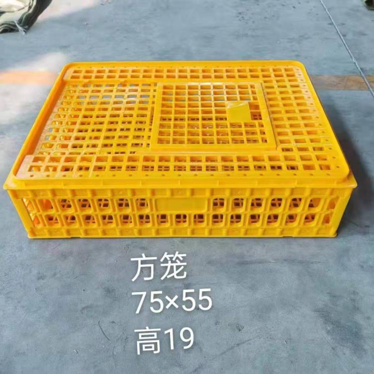 Пластиковая поилка для цыплят, Заводская поставка