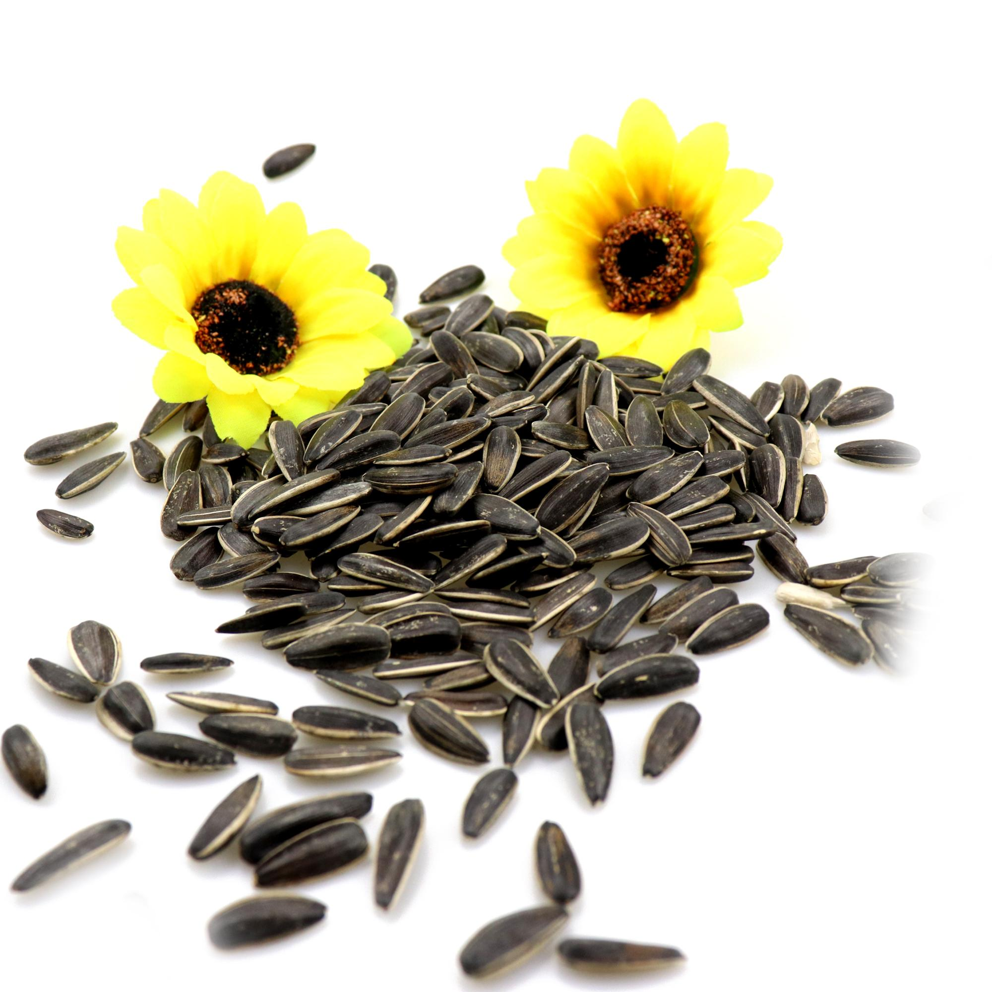 A shortage of market sunflower seeds Natural growth