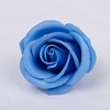 हल्के नीले रंग