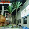 Coconut tree set