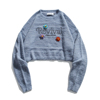 Grayish blue-1
