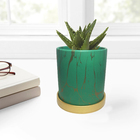Planter pots indoor customized printed succulent pots ceramic
