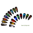 Polish Cat Eye 9D Gel Polish Factory 9 Colors Changing Color
