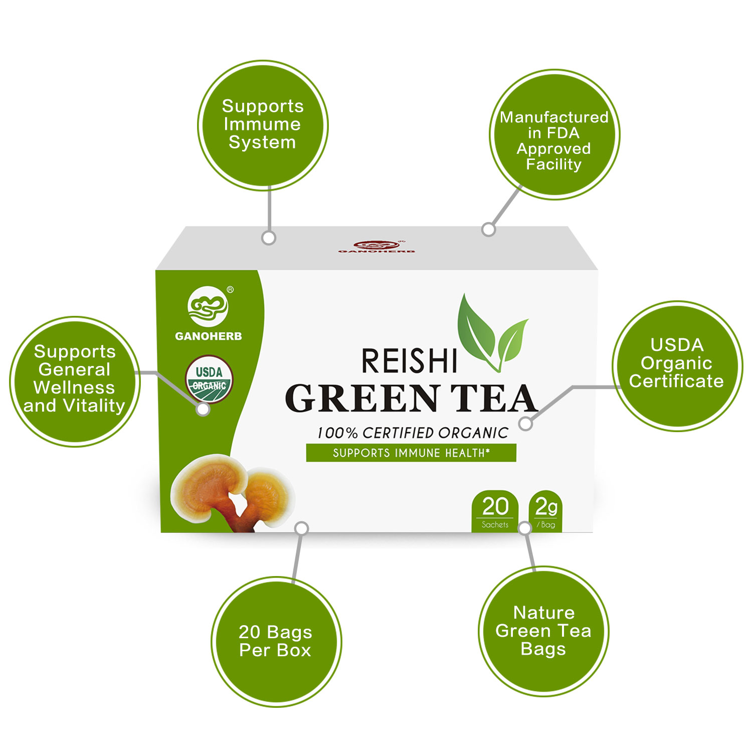 promotion 100% Organic Chinese Green Tea Bags with reishi Mushroom lingzhi Extract