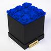 M 12: loyal blue